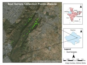 Leopard Density Mapping Project